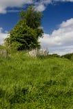 gammal postering för staket Arkivbild