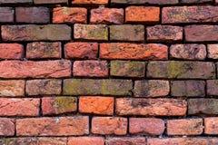 Gammal röd-apelsin tegelstenvägg 14 Royaltyfri Bild