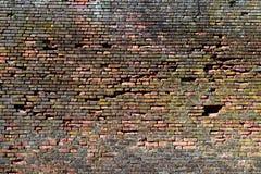 Gammal röd-apelsin tegelstenvägg, bakgrund, textur 26 Fotografering för Bildbyråer