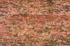 Gammal röd-apelsin tegelstenvägg, bakgrundstextur 14 Arkivbilder