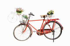 Gammal röd cykel med blomman i korgen som isoleras på den vita backgrouen Arkivfoton