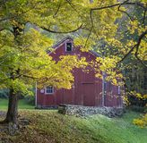 Gammal röd ladugård i Autumn Yellow Foliage arkivfoton