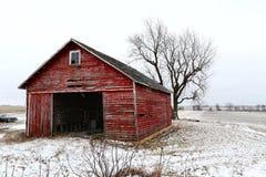 Gammal röd ladugård i vinter i Illinois Arkivbilder