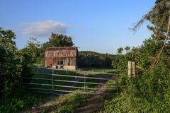 Gammal röd ladugård på grönt bondefält arkivfoton