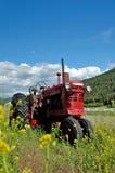 gammal röd traktor för lantgård Arkivbilder
