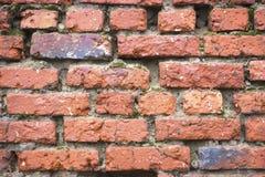 gammal röd vägg för tegelsten royaltyfri bild