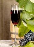 Gammal rött vin Arkivbild