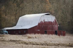 Gammal röd ladugård med det vita taket i lantliga Indiana Royaltyfri Fotografi