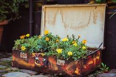Gammal resväska med blommor Arkivfoto