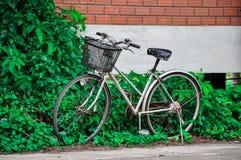 Gammal retro cykel för tappning och vägg för röd tegelsten royaltyfri bild