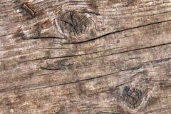 Gammal riden ut rutten sprucken grov knuten Wood Grungetextur Royaltyfri Fotografi