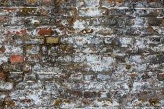 Gammal riden ut tegelstenvägg, textur, bakgrund Fotografering för Bildbyråer