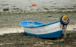 Gammal roddbåt på stranden royaltyfri foto