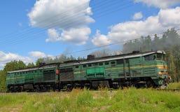 Gammal rostad diesel- lokomotiv Arkivfoton