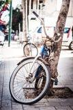 Gammal rostig glömd cykel Royaltyfria Bilder