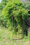 Gammal rostig järnträdgårdport med gröna buskar arkivbild