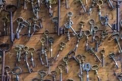 Gammal rostig nyckel- samlingsmodell royaltyfri fotografi