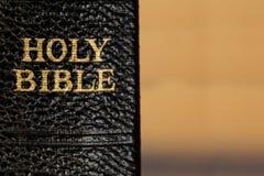 Gammal rygg för helig bibel med guld- bokstäver över suddig bakgrund Royaltyfri Bild