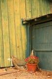 gammal sida för ladugård Fotografering för Bildbyråer
