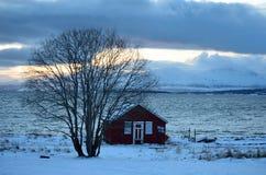 Gammal sjöbod med det enkla trädet, havet och berget Arkivfoton