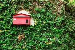 Gammal sjaskig röd postbox på en vägg med gröna sidor Arkivfoto