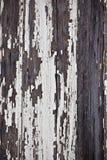 Gammal skalad av träplankayttersidabakgrund Arkivbilder