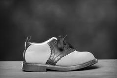 gammal sko Arkivfoton