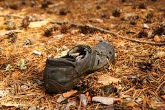 Gammal sko på visare för en sörja i en skog Royaltyfri Foto