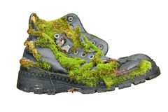 Gammal sko som är bevuxen med mossa Arkivbild