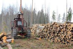 Gammal skogsbruktraktor på den tidiga våren som loggar platsen Royaltyfria Foton