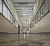 gammal skola för korridor Royaltyfria Foton
