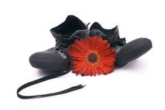 Gammal skor och blomma royaltyfri bild