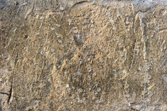 Gammal skrapad betongvägg Arkivfoto