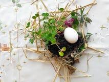 Gammal slavisk ortodox hednisk ritual av fertilitet Förbereda sig till att skorra påskägget i ängen, första rad i fältet, innan a royaltyfri bild