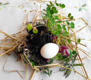 Gammal slavisk ortodox hednisk ritual av fertilitet Förbereda sig till att skorra påskägget i ängen, första rad i fältet, innan a arkivbilder