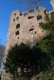 Gammal slott i Baden-Baden Arkivbilder