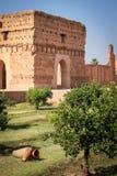Gammal slott i gräsplanträdgård Arkivbilder