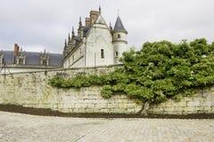 Gammal slott och tree Arkivfoto