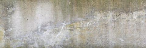 Gammal smutsig betongvägg Royaltyfria Foton