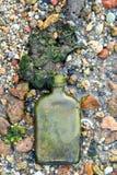 Gammal smutsig glasflaska som är bevuxen med havsväxter på en sandig strand arkivfoto