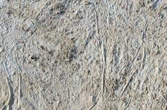 Gammal smutsig grungegrå färgbakgrund Arkivbilder