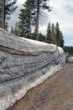 Gammal snöhög vid vägen i Sierra Nevada berg Arkivbilder