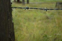 gammal spindelrengöringsduk för staket arkivbild