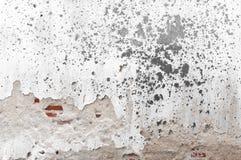 Gammal sprucken konkret bakgrund för tappningtegelstenvägg, texturbakgrund Royaltyfria Foton