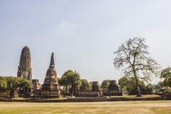 Gammal stad av den Ayutthaya staden i Thailand arkivbild
