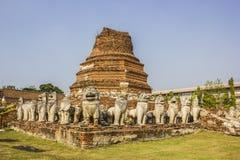 Gammal stad av den Ayutthaya staden i Thailand Royaltyfria Foton