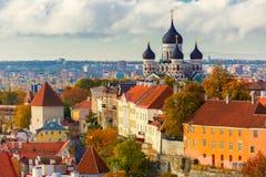 Gammal stad för flyg- sikt, Tallinn, Estland Royaltyfri Foto