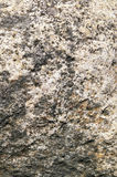 gammal sten Arkivbild