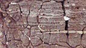 gammal sten för bakgrund Arkivbild
