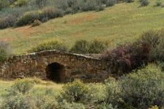 gammal sten för bro royaltyfria bilder